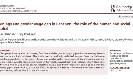 Earnings and Gender Wage Gap in Lebanon: The Role of the Human and Social Capital